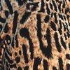 n2leopard